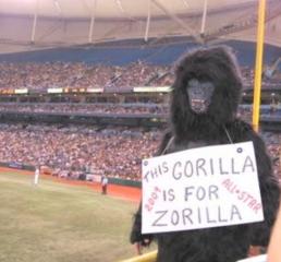 zorilla fan